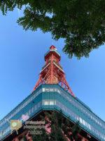 札幌 大通り公園 テレビ塔